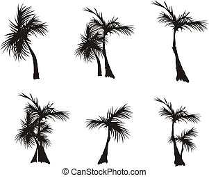 silhouettes of palm trees - Six black silhouettes of palm...
