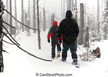 men goes through the woods on snowshoes - Two men goes...