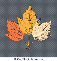 Three leaf - Autumn background with leaves Back to school...