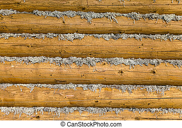 Wall of the wooden village house made of logs