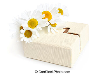 Camomiles and gift box on a white background