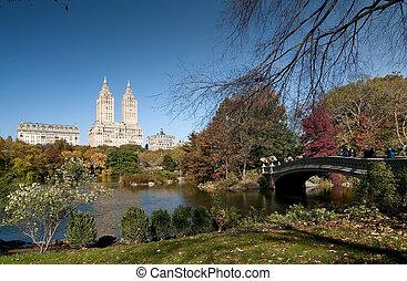 Manhattan, központi, liget