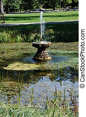 Fountain in the botanical garden