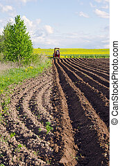 plowed spring field for patatoes and little tractor - plowed...