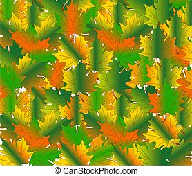 background from maple leaves