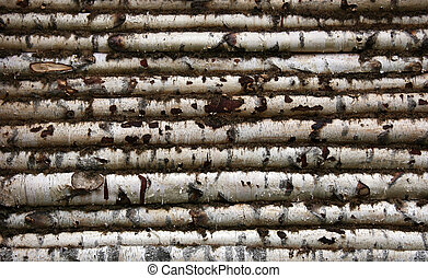 Logged wall - Wall birch logs of wooden house