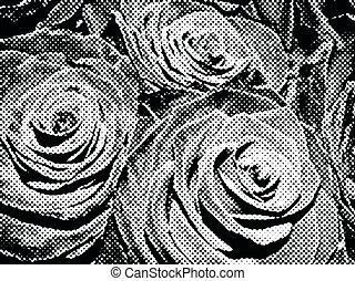 Roses black and white, retro