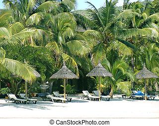 Beach Resort Mauritius - Beach Resort in Mauritius...