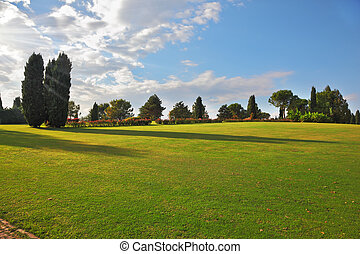 A large green meadow in the park