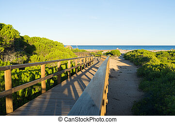 Carabassi beach amidst a natural park, Costa Blanca, Spain