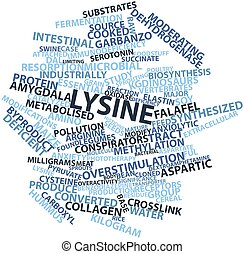 Word cloud for Lysine - Abstract word cloud for Lysine with...