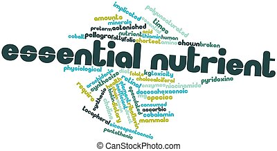 Essential nutrient - Abstract word cloud for Essential...