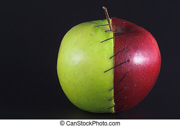Stitched Apple - Red and green apple halves stitched...