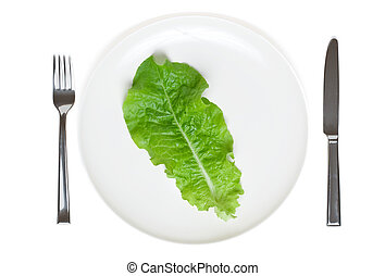 single lettuce leaf on a plate, extreme dieting, isolated