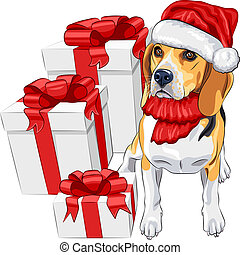 color sketch of the dog Beagle breed  in the red hat of Santa Claus with Christmas gifts