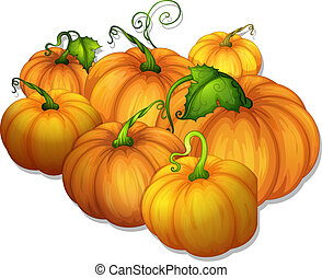 pumpkins - illustration of a bunch of yellow pumpkins