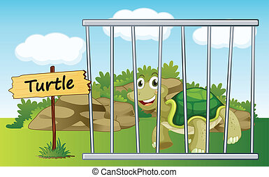 tortoise in cage - illustration of a tortoise in cage and...