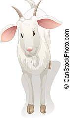 goat - illustration of a goat on a white background