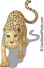 leopard - illustration of a leopard on a white background