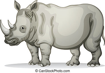 Rhinoceros - illustration of a Rhinoceros on a white...