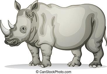 Rhinoceros - illustration of a Rhinoceros on a white...