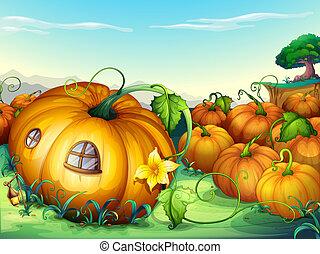 pumpkins - illustration of a bunch of yellow pumpkins