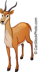 antelope - illustration of a antelope a white background