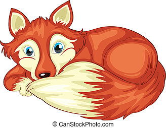 fox - illustration of a fox on a white background
