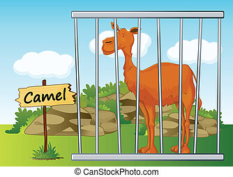 Camel in cage - illustration of a camel in cage and wooden...