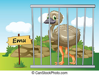 emu in cage - illustration of a emu in cage and wooden board