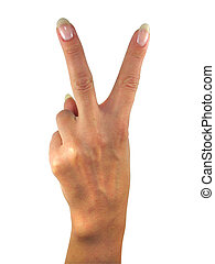 Human lady hand showing two fingers isolated over white background