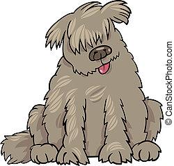Neufundland, hund, karikatur, abbildung