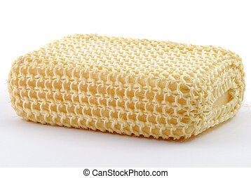 Sponge - A sponge