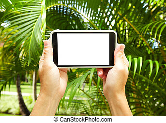 Woman with a smartphone in tropical garden Vacation