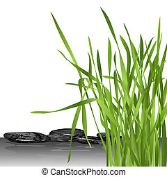 fresh grass and stones - green fresh grass and black stones...