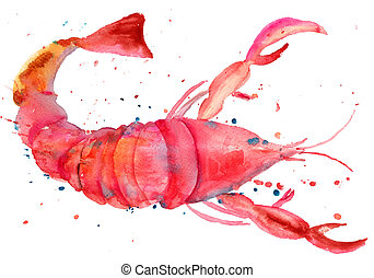 Watercolor illustration of lobster