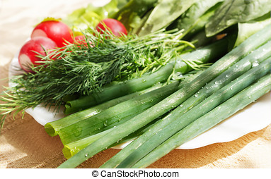 Fresh spring onions, dill and garden radish, lie on a dish