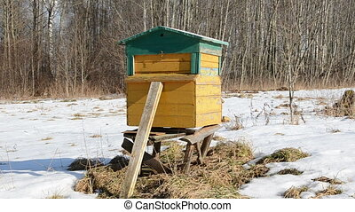 one wooden  bee hive on March snow in garden