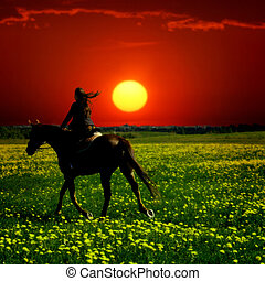 horse rider in green dandelion field