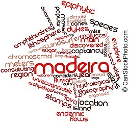 Word cloud for Madeira - Abstract word cloud for Madeira...