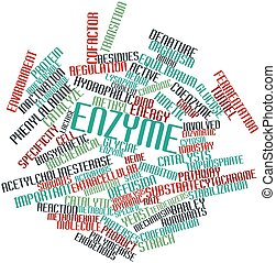 Word cloud for Enzyme - Abstract word cloud for Enzyme with...