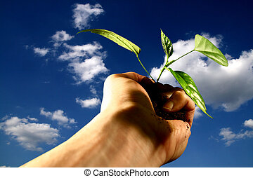 hand plant new life care concept