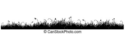 black grass - Black silhouette of a meadow grass on a white...