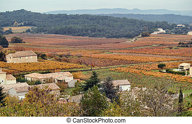 autumn landscape in Provence, France