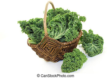 Kale - fresh green kale on a white background