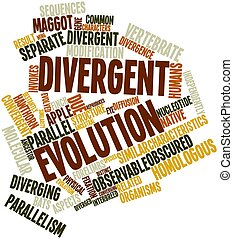 Divergent evolution - Abstract word cloud for Divergent...