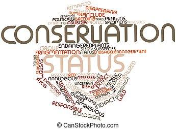 palabra, nube, conservación, estado