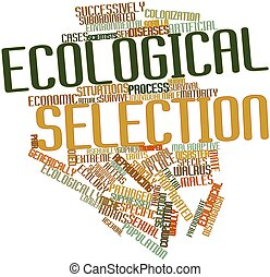 Ecological selection - Abstract word cloud for Ecological...