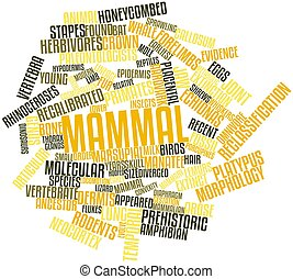 Word cloud for Mammal - Abstract word cloud for Mammal with...