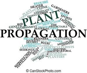 Word cloud for Plant propagation - Abstract word cloud for...
